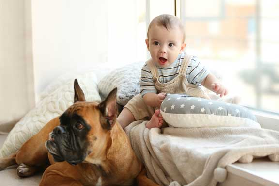 Baby with dog.